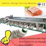 New desity shrimp classifier machinery,sorting machinery for shrimp
